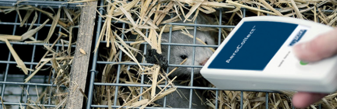 What's up Doc? Monitor Aleutian Disease with AeroCollect