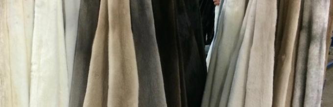 Results Saga Furs June Auction